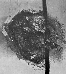 Mississauga-Blob (1979)